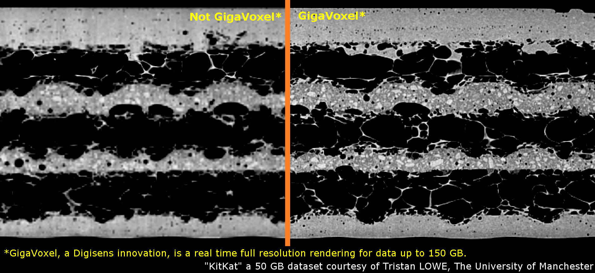 GigaVoxel rendering by Digisens